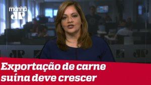 Denise: Com cenário exterior favorável e bons indicativos no Brasil, dólar continua em queda