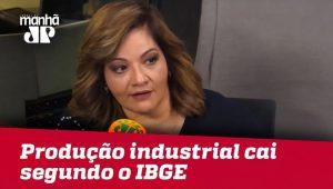 IBGE: Produção industrial cai em 14 dos 15 locais pesquisados em maio | Denise Campos de Toledo