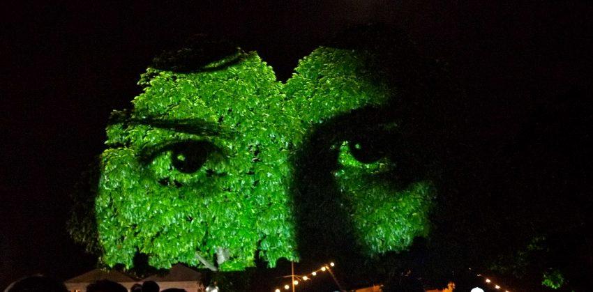 """Árvores na Avenida Paulista """"viram"""" rostos para chamar atenção sobre doença rara"""