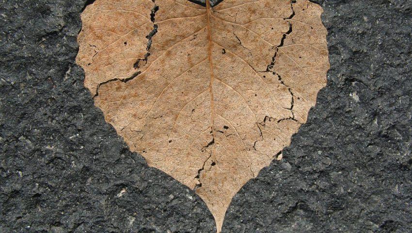 """Xô, tristeza: """"Coração partido"""" pode virar doença"""
