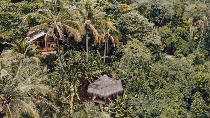 Jungle Lodge: glamping na floresta de Ilha Grande