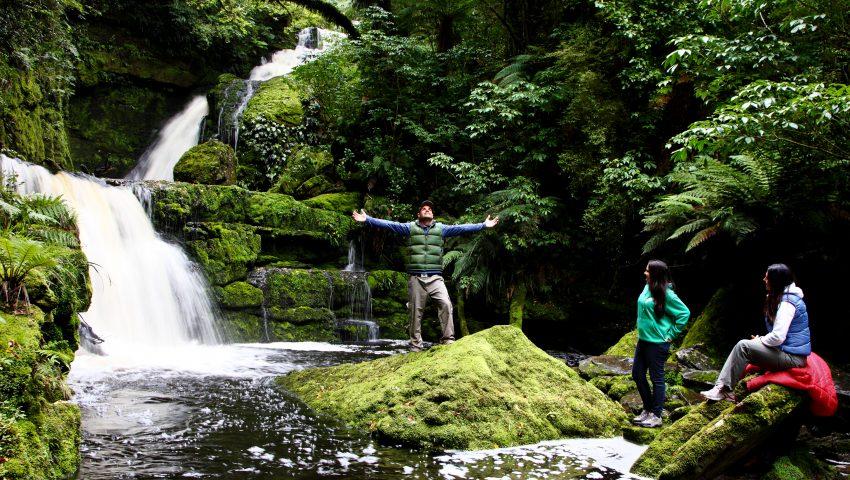 Nova Zelândia : exuberância de outro mundo